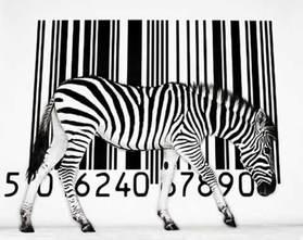 barcode design